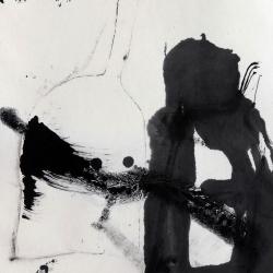 朱岚, 静物, 40X63cm, 水墨, 2014